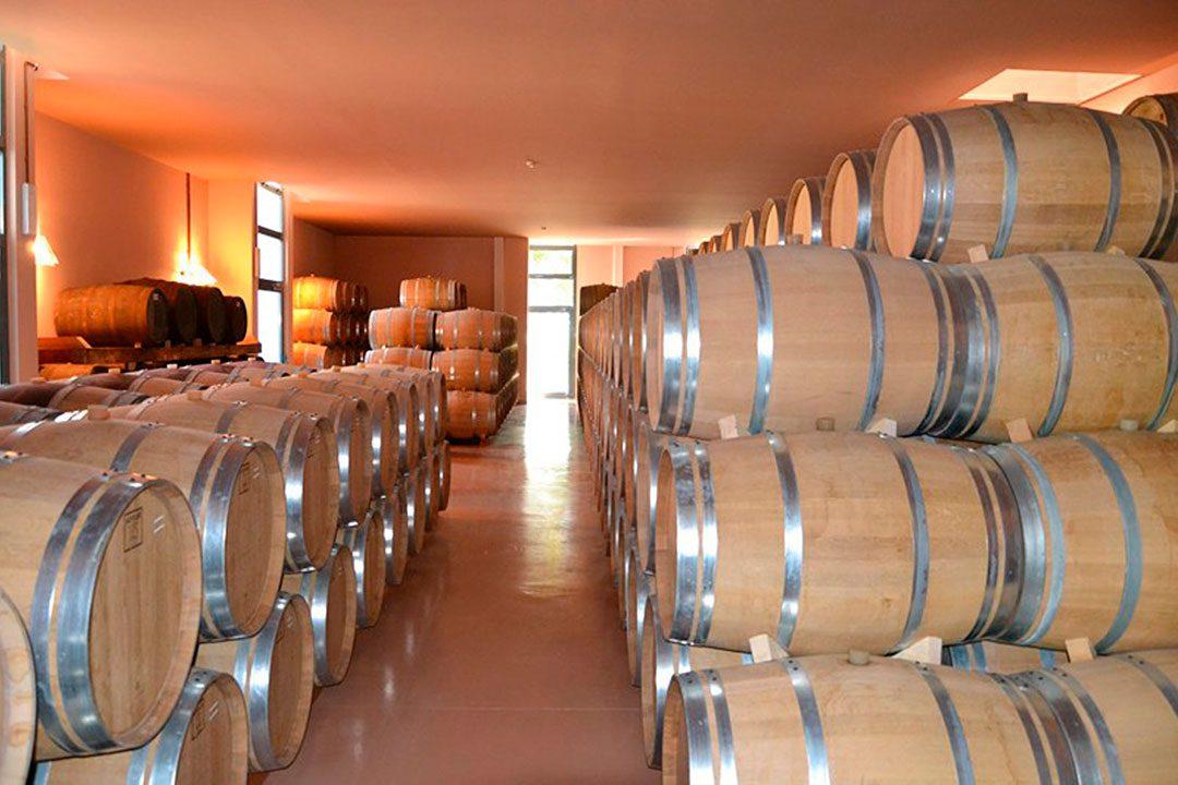 Distilleria Segnana - Ravina (TN)